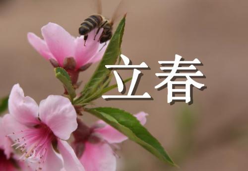 立春祝福语